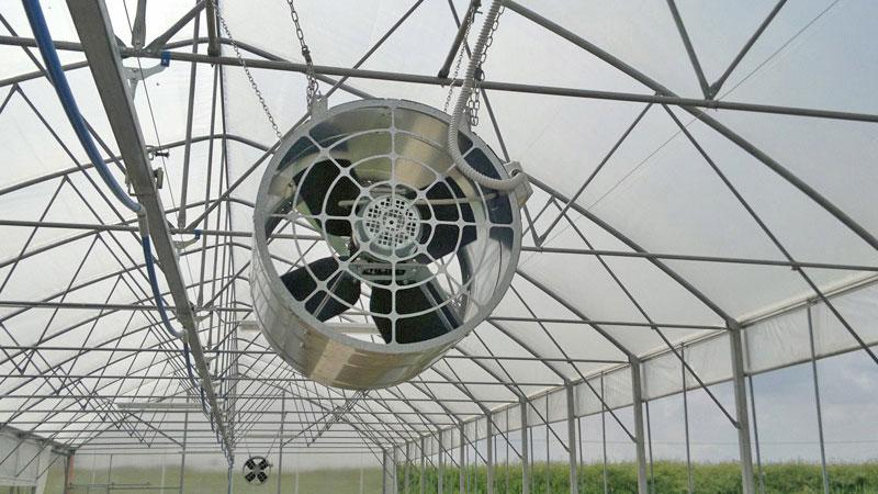 Tanti ventilatori per il fresco